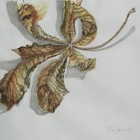 Kastanienblatt